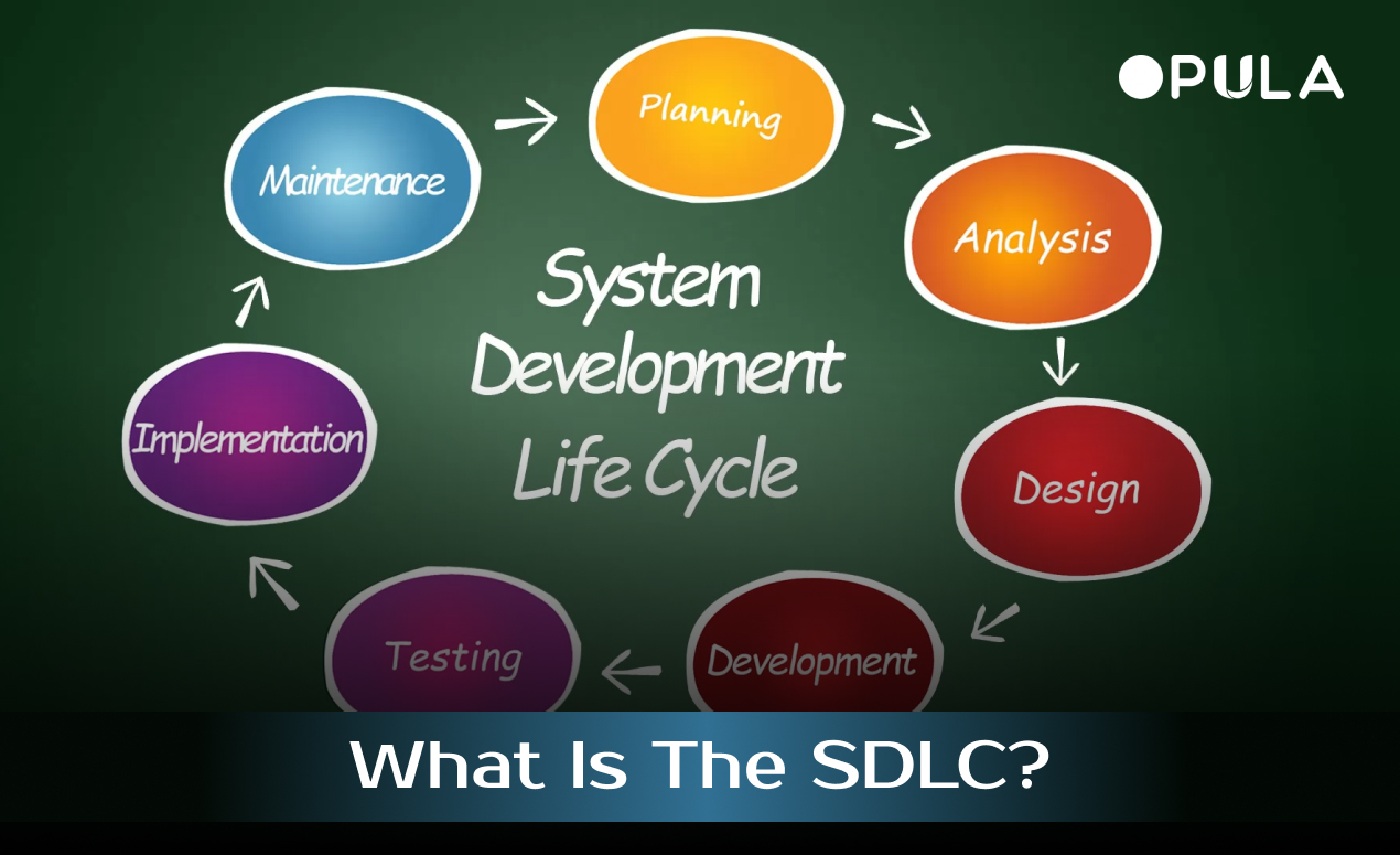 what-is-the-sdlc?